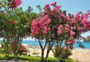 Türkische Riviera / Antalya